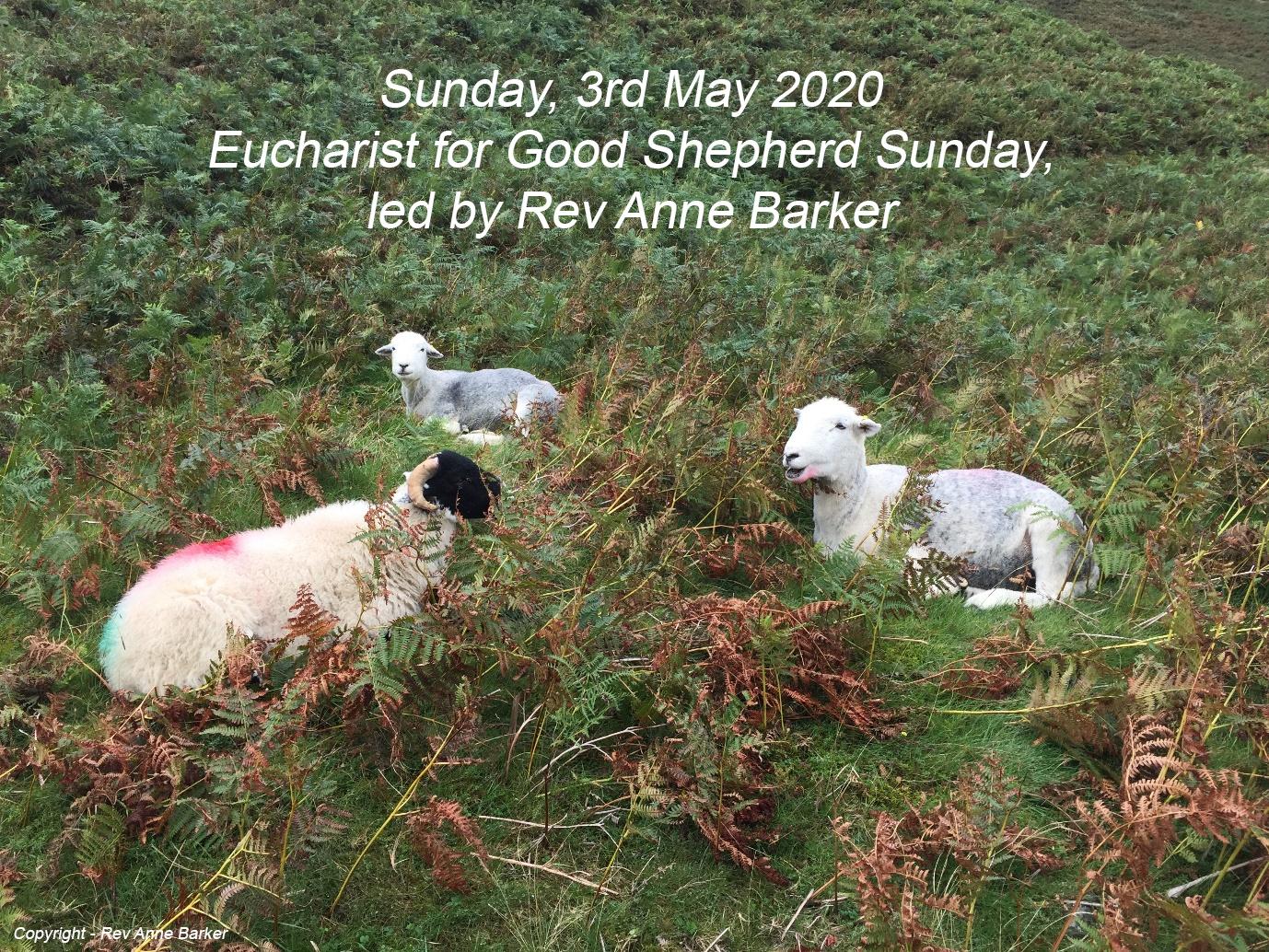 Good Shepherd Eucharist